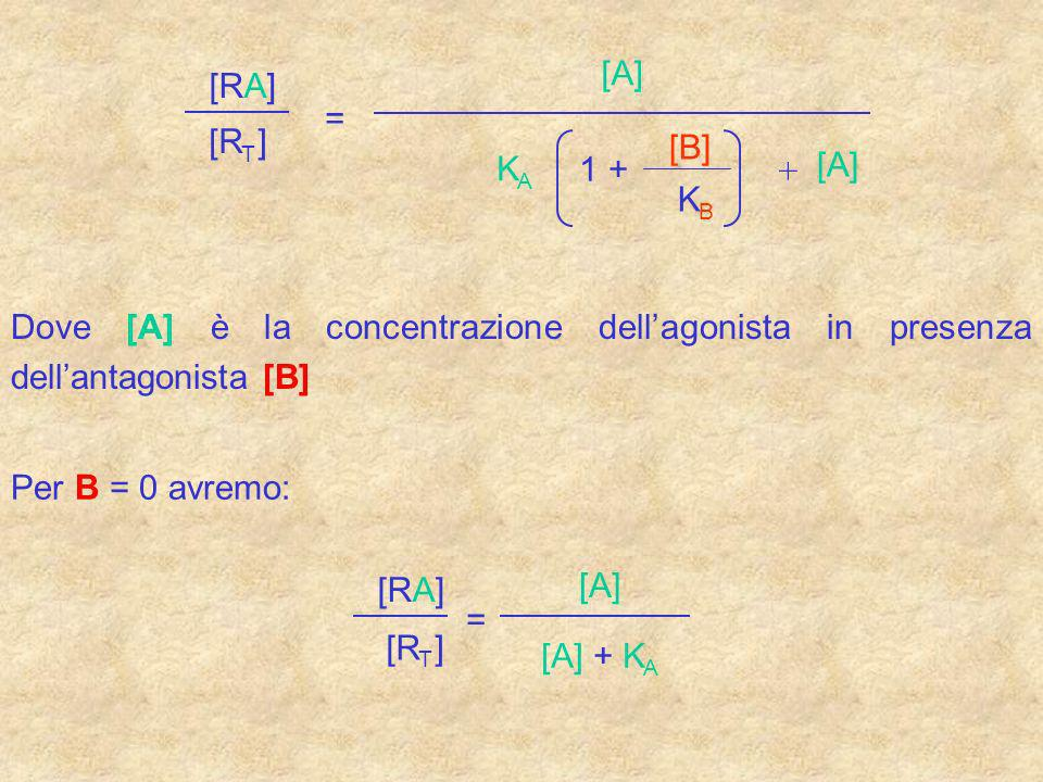 [A] [RA] = [R ] [B] K 1 + [A] + K